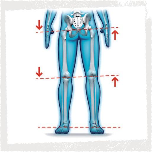 Haltungsanalyse - Varus-Valgus Stellung der Beine