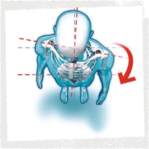 Haltungsanalyse - Rotationen und Schiefstand im Bereich Schulter